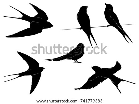 stock-vector-set-of-swallow-silhouettes-vector-illustration