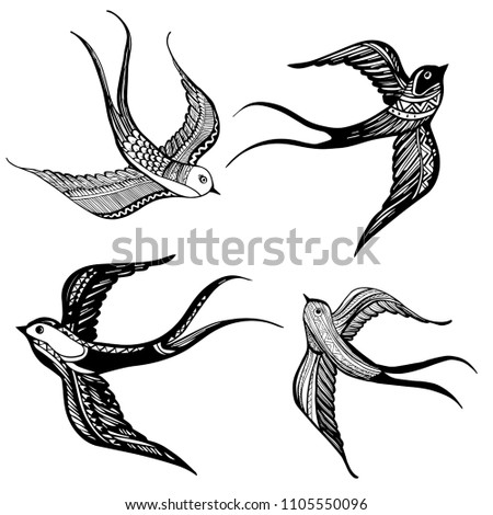 set of swallows icon