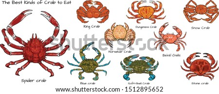 set of the best kinds of crab
