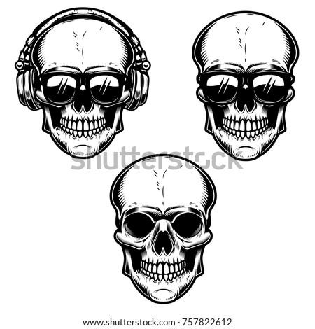 set of the human skulls skull