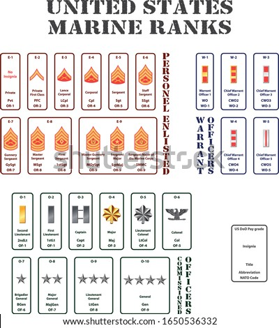 set of the ranks of the united states marine corps Photo stock ©