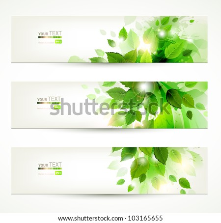 set of three banners with fresh