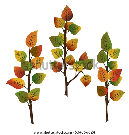 set of three branches of