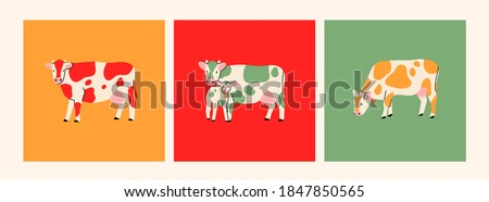 Set of three cards. Various cute Cows. Abstract colors. Hand drawn colored trendy Vector illustrations. Funny characters. Cartoon style. Isolated on white background