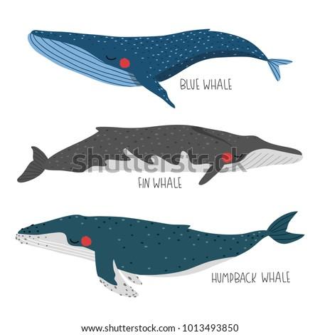 set of three illustration of