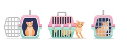 Set of three positions manual plastic carrying transporter for cats on white background. Cat carrier front view, side view, with the open and closed door. Flat cartoon vector illustration