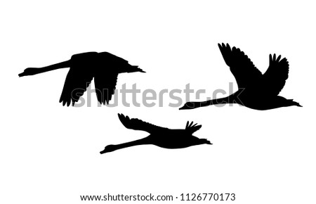 set of three silhouettes of