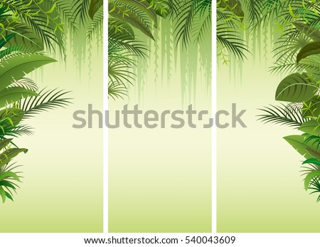 set of three tropical forest
