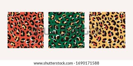 set of three various leopard