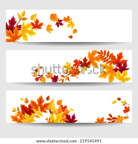 set of three vector banners