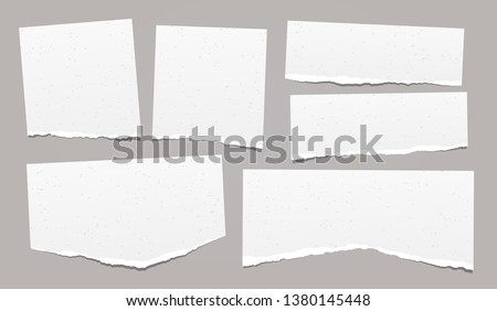 Set of torn note, notebook grainy paper strips stuck on grey background. Vector illustration