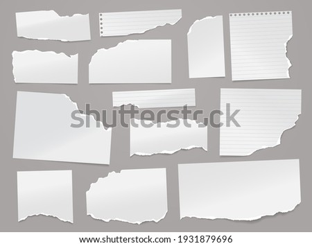 Set of torn white lined note, notebook paper pieces stuck on light grey background. Vector illustration