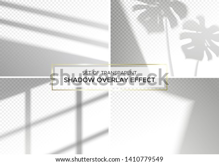 Set of transparent shadow overlay effects for branding. A4 format Mockups. Scenes of natural lighting. Photo-realistic vector illustration. The monstera leaves and window frames overlays shadows
