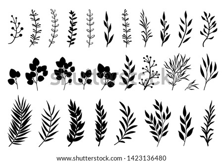 Set of tree branches, eucalyptus, palm leaves, herbs and flowers silhouettes