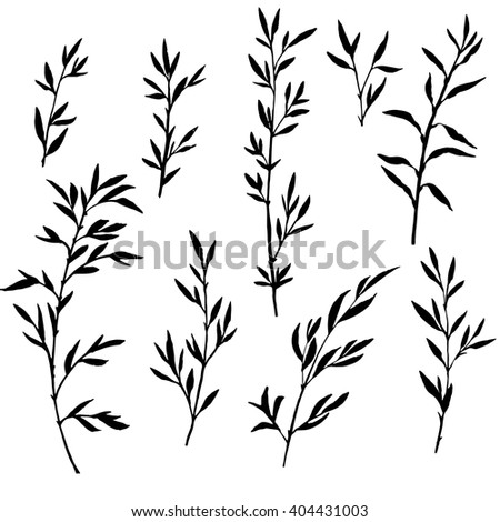 set of tree branches with