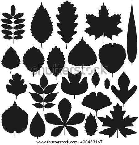 set of tree leaves silhouette