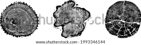 Set of tree log woodcut rings print background in grunge texture vector illustration. Created using AI CS6.