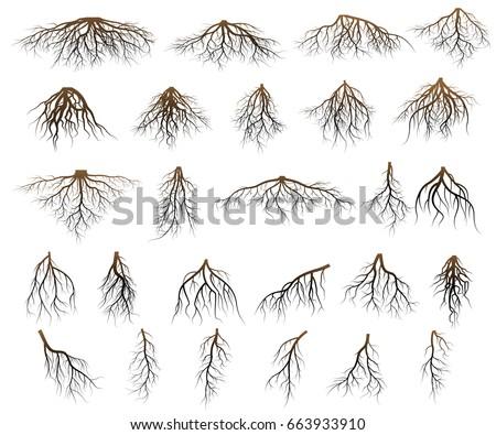 Set of tree roots. silhouette vector Illustration. Stock fotó ©