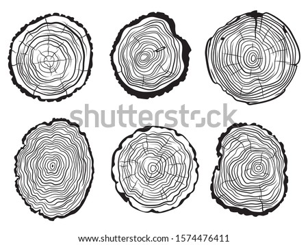 Set of Tree slice. Collection of cut tree trunk. Industrial wood.Vector illustration on a white background.