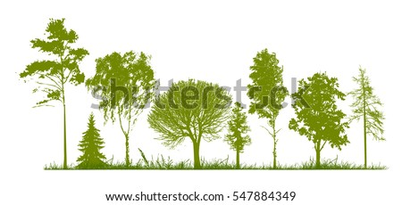 Set of trees silhouette. Vector