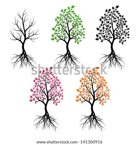 set of trees with leaves of
