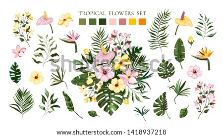 Set of tropical exotic flowers frangipani hibiscus calla green monstera palm leaves. Floral bouquets arrangements for wedding invitation save the date card. Vector illustration in watercolor style