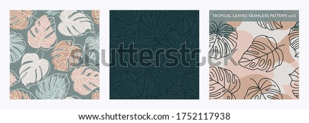 Set of Tropical Monstera Seamless Leaf Patterns. Vector floral background in a trendy minimalistic linear style in pastel colors for printing packaging, fabric, t-shirts, covers, posters. Vol. 2 Stock fotó ©