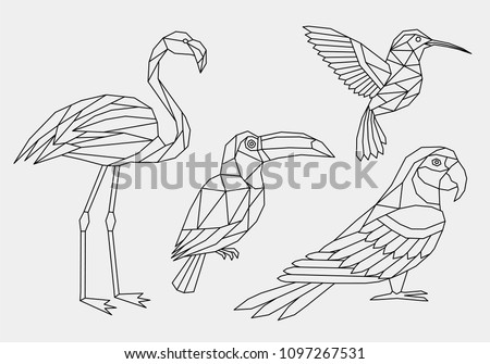 Set of tropical polygonal birds. Geometric linear abstract hummingbird, flamingo, toucan and parrot. Vector illustration.