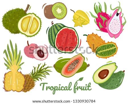 Set of tropical summer fruits. Exotic fruits: durian, kiwi, watermelon, lychee, pineapple, papaya, avocado, kiwano, carambola, dragon fruit. Cut fruit. Vector  illustration isolated on white. #1330930784