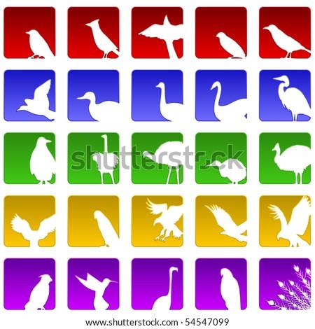 Set of twenty five icons for various bird species
