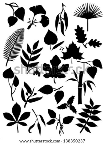 Set of twenty leaf silhouettes - stock vector