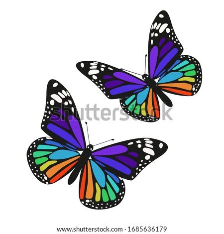 set of two rainbow butterflies