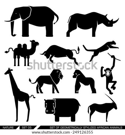 Set of various African animal icons: elephant, rhino, hippo, lion, puma, camel, bull, giraffe, monkey, gorilla. Vector illustration.
