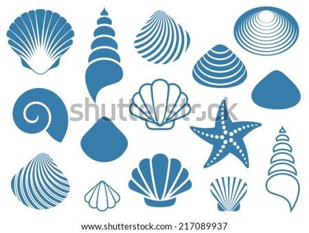 Set of various blue sea shells and starfish