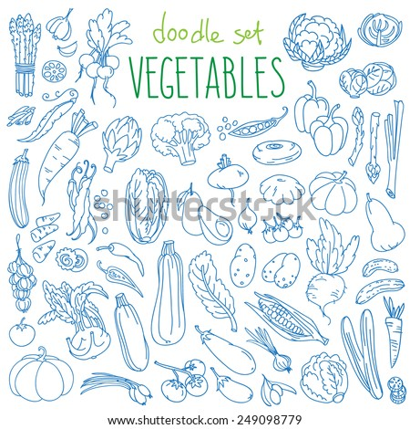 Set of various doodles, hand drawn rough simple sketches of different kinds of vegetables. Vector freehand illustration isolated on white background.