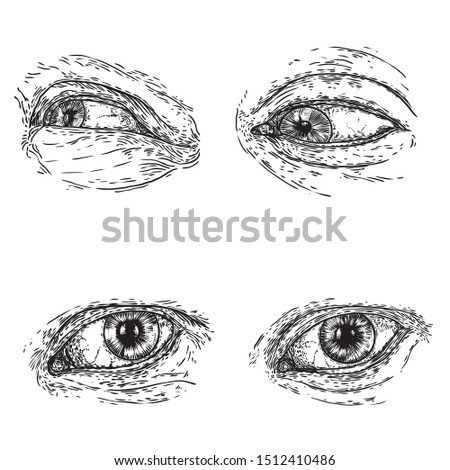 Set of various drawing of the human eye in different direction and emotion. All seeing eye, the symbol of the Masons as an option design element. Man vision. Vector.