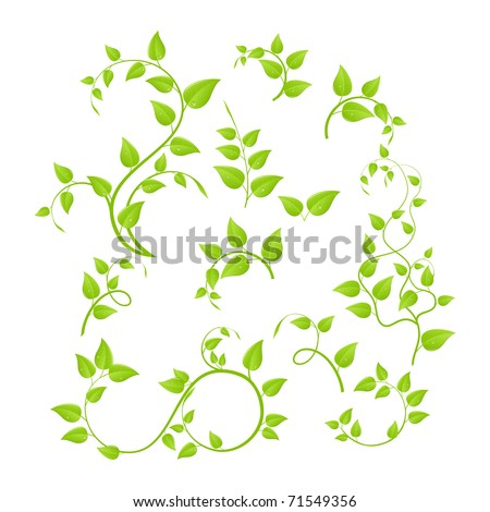 Set of various green plants, young saplings. Vector illustration, isolated on a white. Stockfoto ©