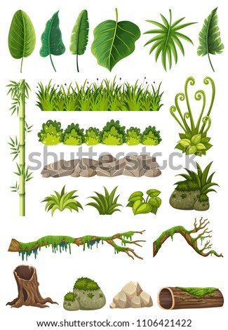 set of various jungle objects