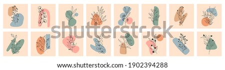 Set of Various Leaves and Flowers, abstract shapes. Round elements, abstract shapes, lines, floral. Minimalistic style. Vector stock illustration. Line art. Contemporary Hand drawn illustrations. Photo stock ©