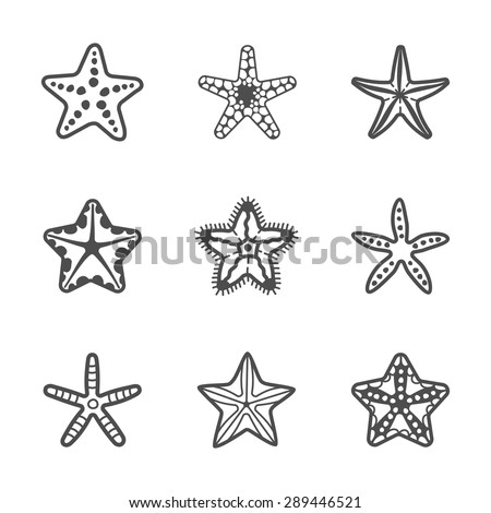 set of various sea starfish
