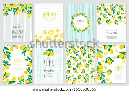 Set of vector banner illustration. Bright taste. Sour taste . Yellow Lemon.