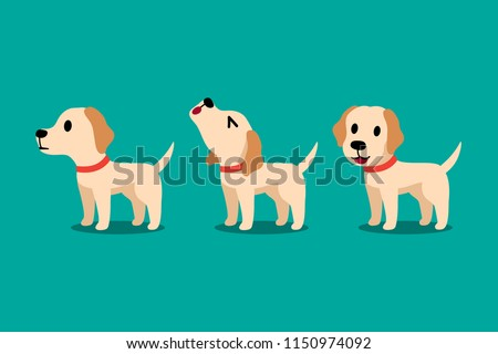 Set of vector cartoon character labrador dog poses for design.
