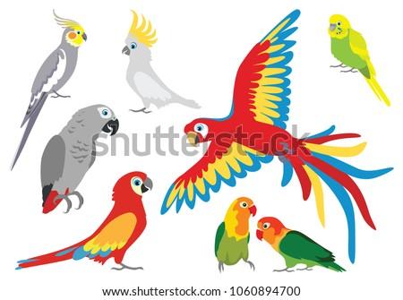 set of vector cartoon colorful