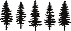 set of vector christmas tree silhouettes, traced outline, detailed silhouette of fir trees