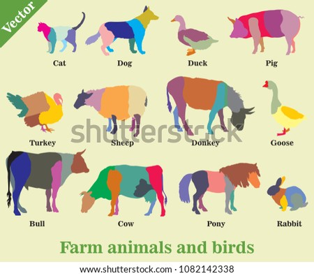 Set of vector colorful mosaic farm animals and birds ( Dog, Cat, Cow, Turkey, Donkey, Pig, Rabbit, Goose,  Sheep, Duck, Bull) silhouettes isolated on green background