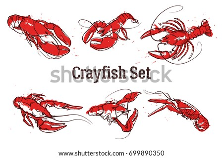 Set of vector crawfish illustrations drawn in ink. Splattered seafood concept on white background. Hand drawn boil prawn or lobster. Text CRAYFISH SET. Sketch vector set good for pub menu decoration