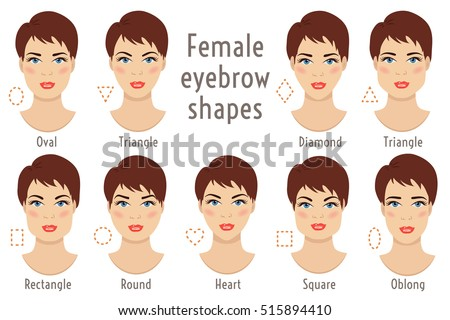 set of vector eyebrow shapes