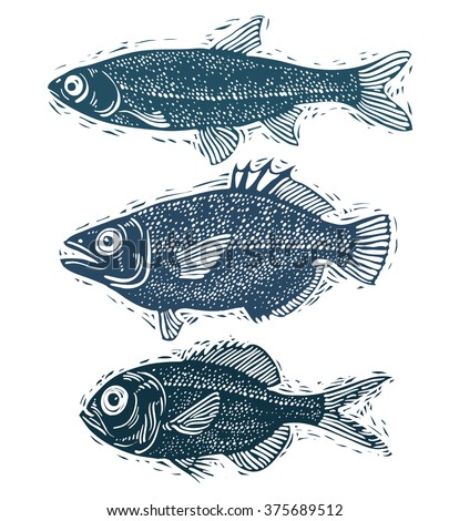 Set of vector fishes, different underwater species. Organic seafood graphic symbols collection, freshwater fishes, sea bass, sea bream and salmon.
