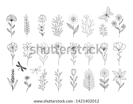 Set of vector floral design elements. Decoration elements for invitation, wedding cards, valentines day, greeting cards. Isolated.