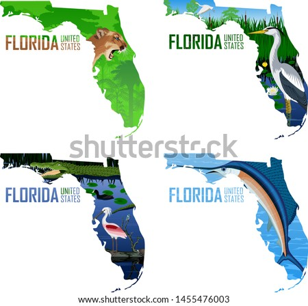 Set of vector Florida - American state map with swordfish Atlantic sailfish, great blue heron, puma cougar or mountains lion, alligator, spoonbill, coot and turtle